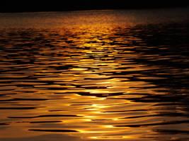 Liquid gold by dani221