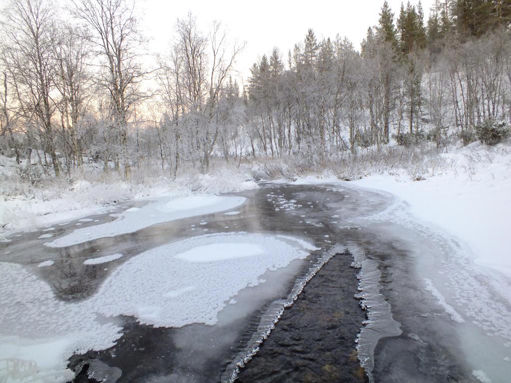 More Frozen Stream by dani221