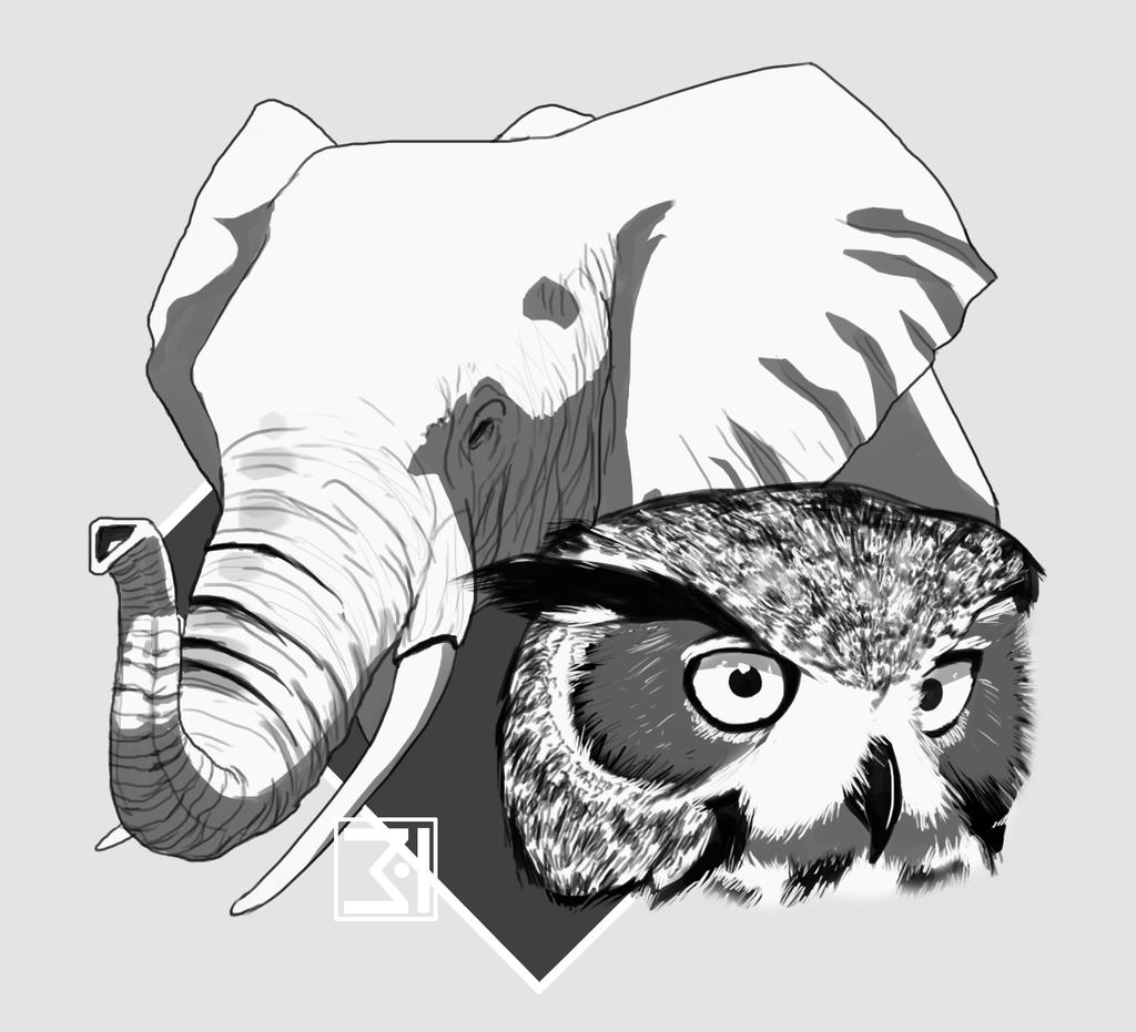 elephant and owl by 3 i on deviantart