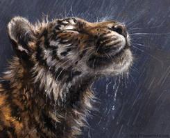 Rain King by kenket