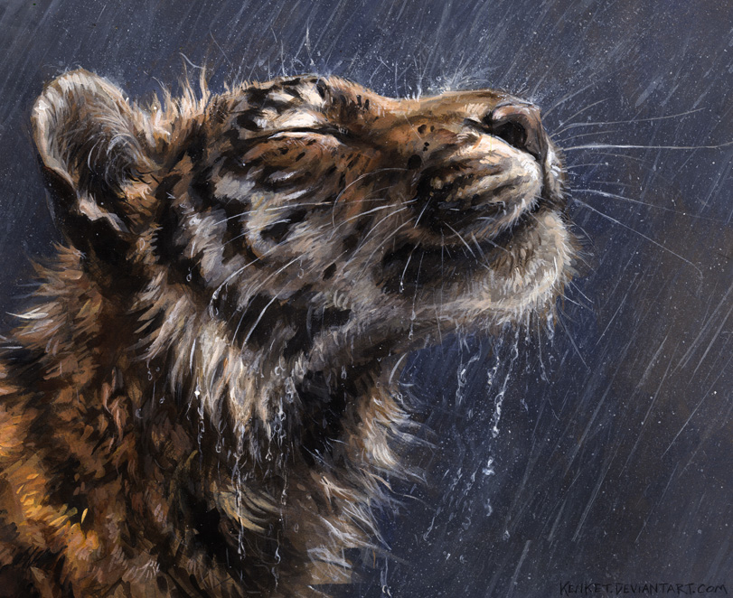 Rain King by kenket