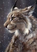 Singular Lynx