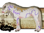 Carlo* GR001 - Official Padro Group Horse