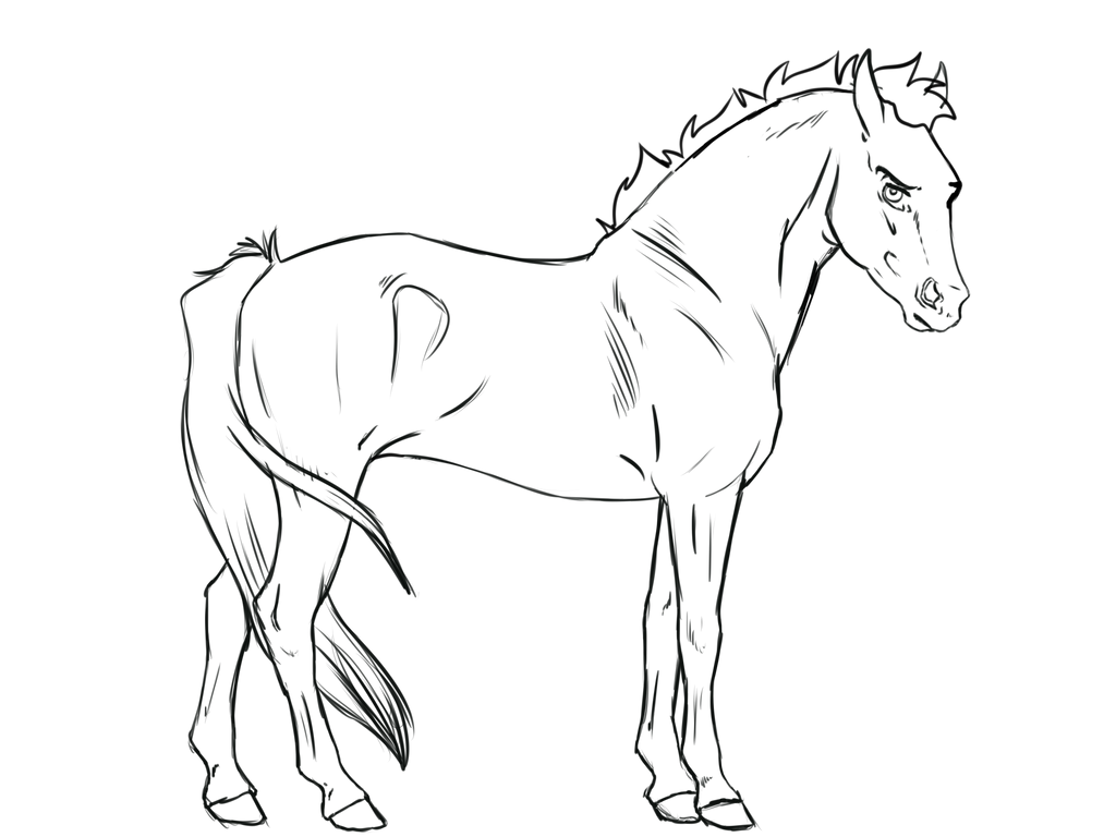 Line Drawing Png : Horse lineart free to use by kimbokah on deviantart