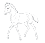 Padro Foal Lines - New Version