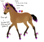 4548 Padro Foal Redesign - closed by KimboKah