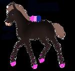 Padro Foal Design - NGS Zbigniew 3199 by KimboKah