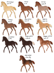 Padro Color Family: Chestnut and Modifiers