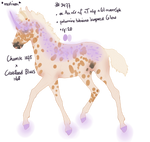 Padro Foal Design - NGS Iokepa 3477 by KimboKah