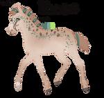 8383 Padro Foal Design for sandym918 by KimboKah