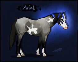 5594 NGS Ariel* - Pirroko Mare by KimboKah