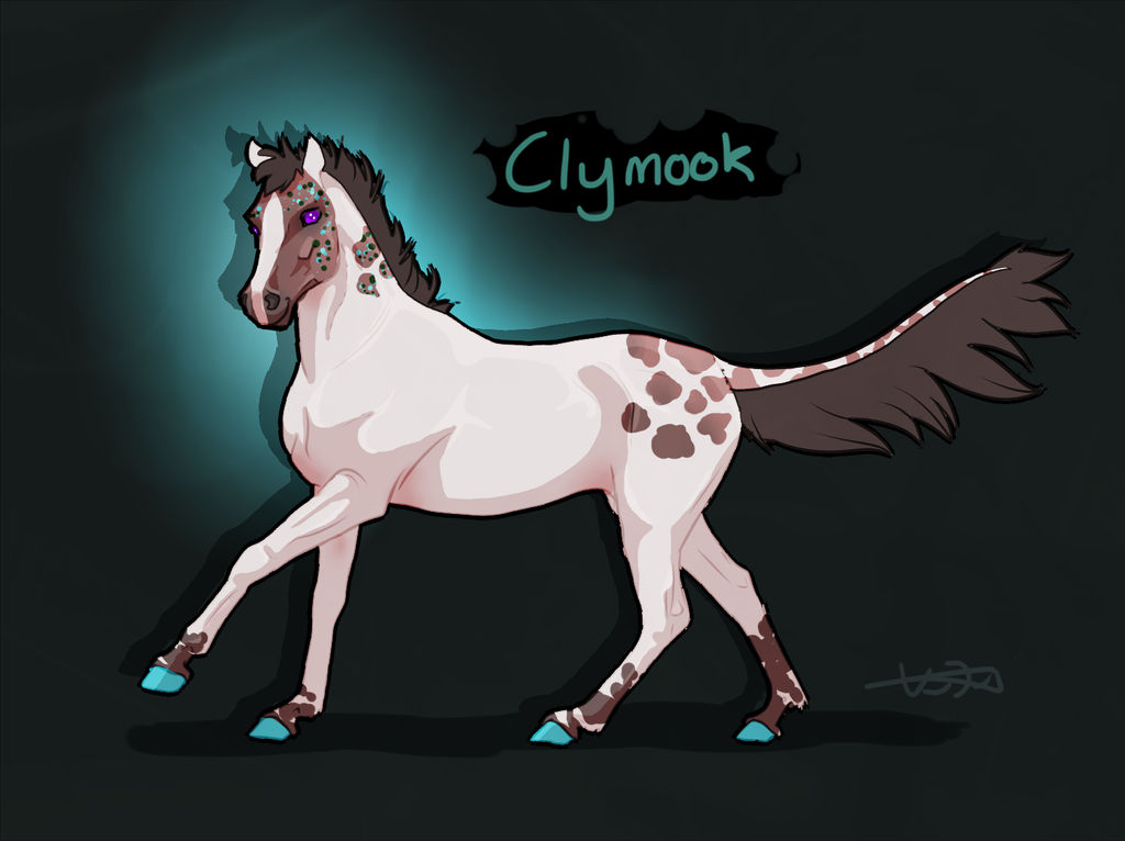 N5196 NGS Clymook