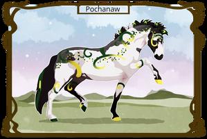 5676 NGS Pochanaw by KimboKah