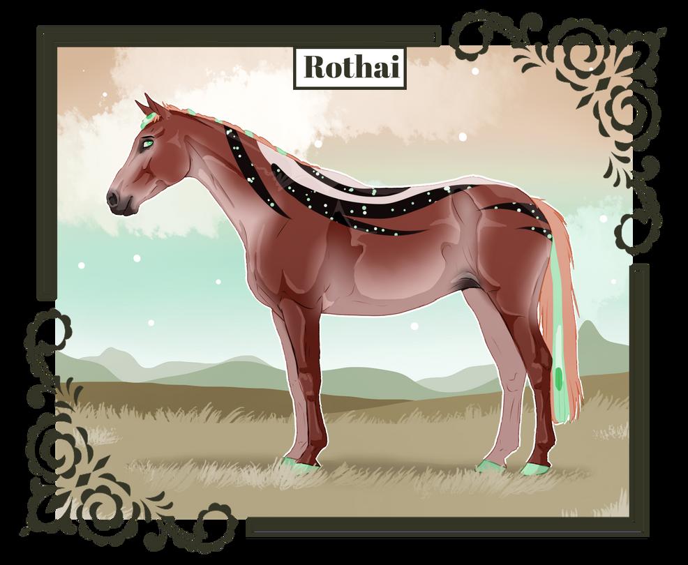 K1694 NGS Rothai