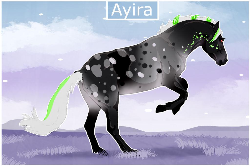 1345 NGS Ayira