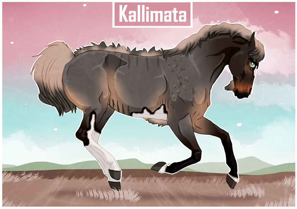 5113 NGS Kallimata