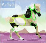 K8806 NGS Arka