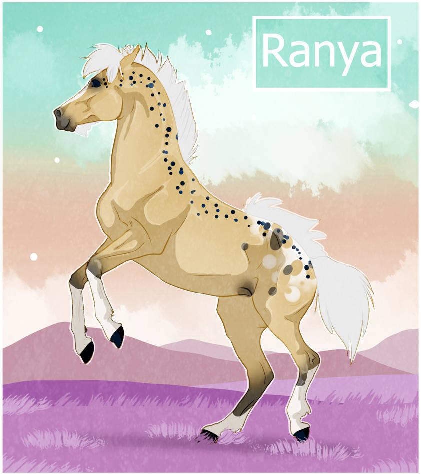 K7608 NGS Ranya