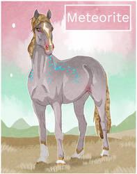 5861 NGS Meteorite
