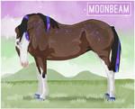 1405 NGS Moonbeam