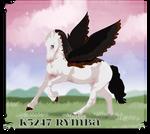 K5247 NGS Rymba