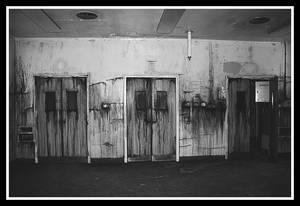 The Bleeding Walls