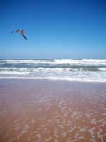 Beach Stock 02 by Solira-Stock