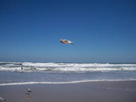 Beach Stock 03 by Solira-Stock