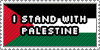 I stand with Palestine by TheMarianOmi