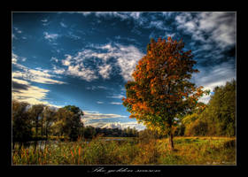 The golden season by Jurnov
