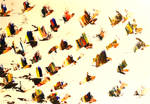 Colour Flies Away