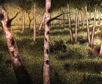 Mature Birch Trees  (WIP) - Detail
