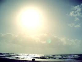 Winter sun over beach's bench by cianotico