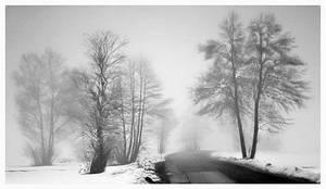 Melancholy Of Nature II