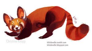 Red Panda by kiki-doodle