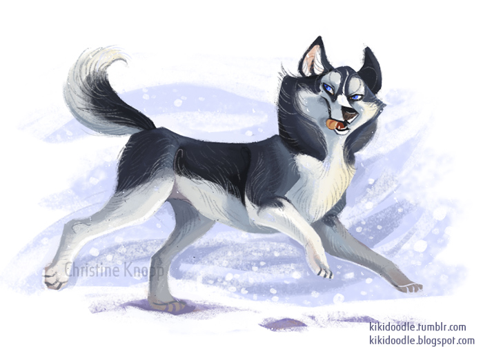 [bank] Les artistes que vous adorez - Page 4 Siberian_husky_by_kiki_doodle-d6o8q03
