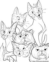 TICA Cat Coloring Book Page 6