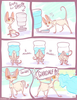 Gandalf Drinks Too Much Water Page1
