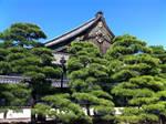 Where the Shogun lived