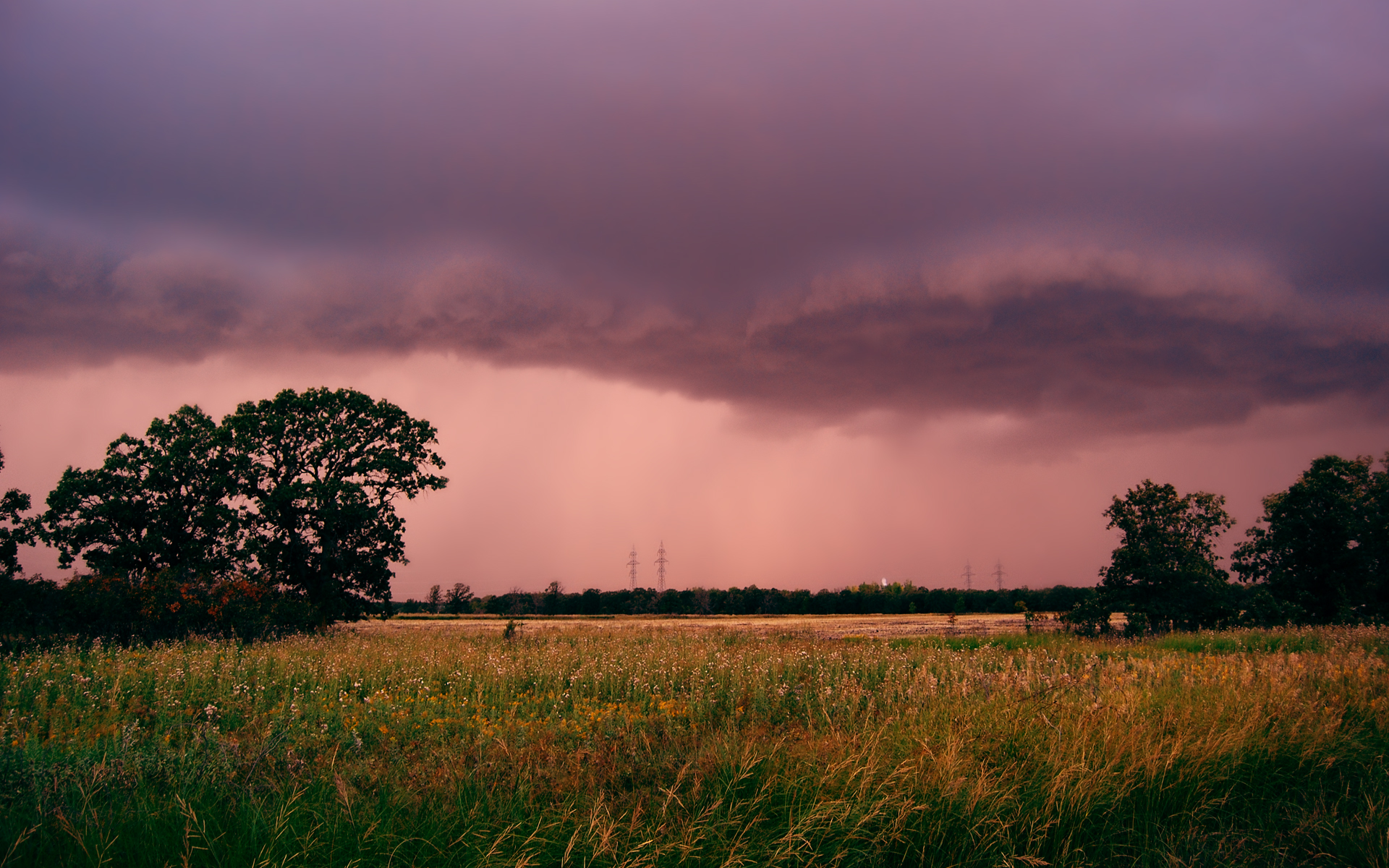 Storm by netherl