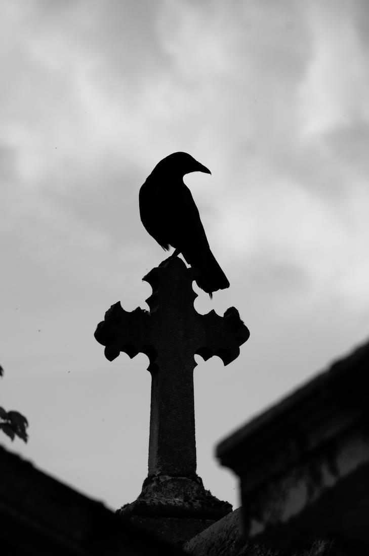 Raven and Cross 2 by Heurchon