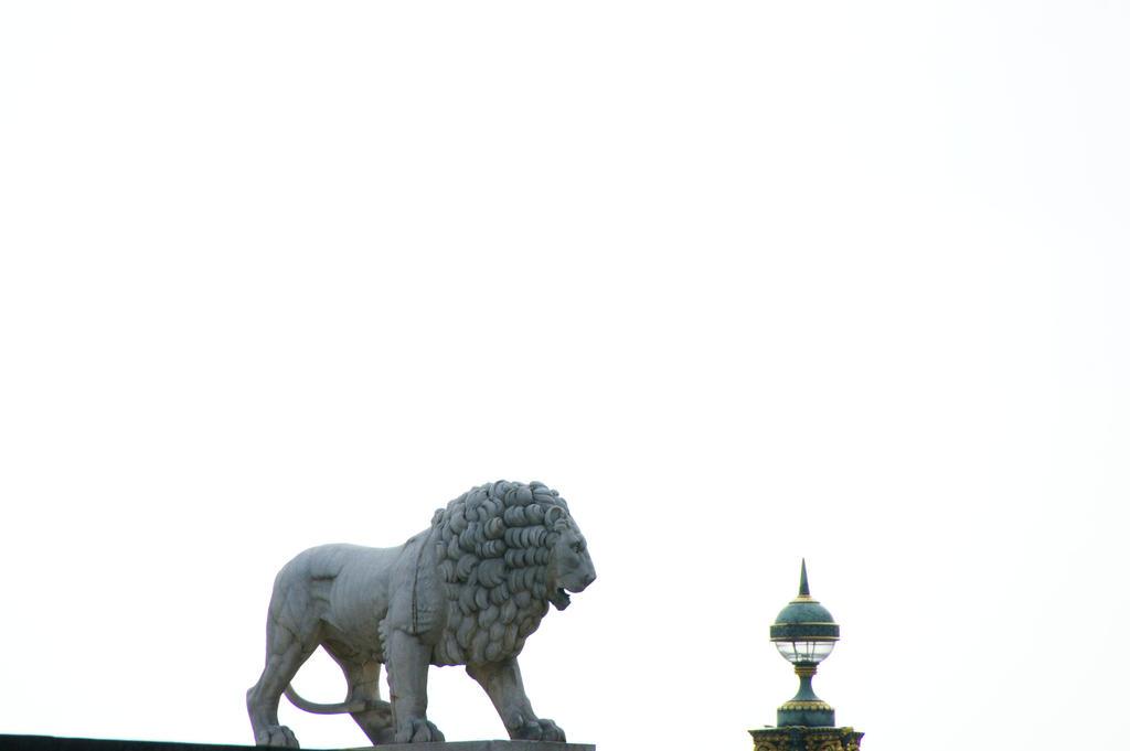 Lion in Paris by Heurchon