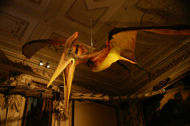 The Pterodactyl by Heurchon