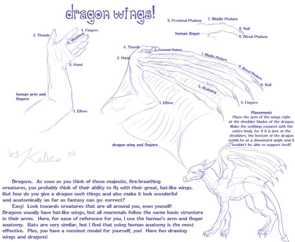 Dragon Wing Tutorial by kalicothekat on DeviantArt