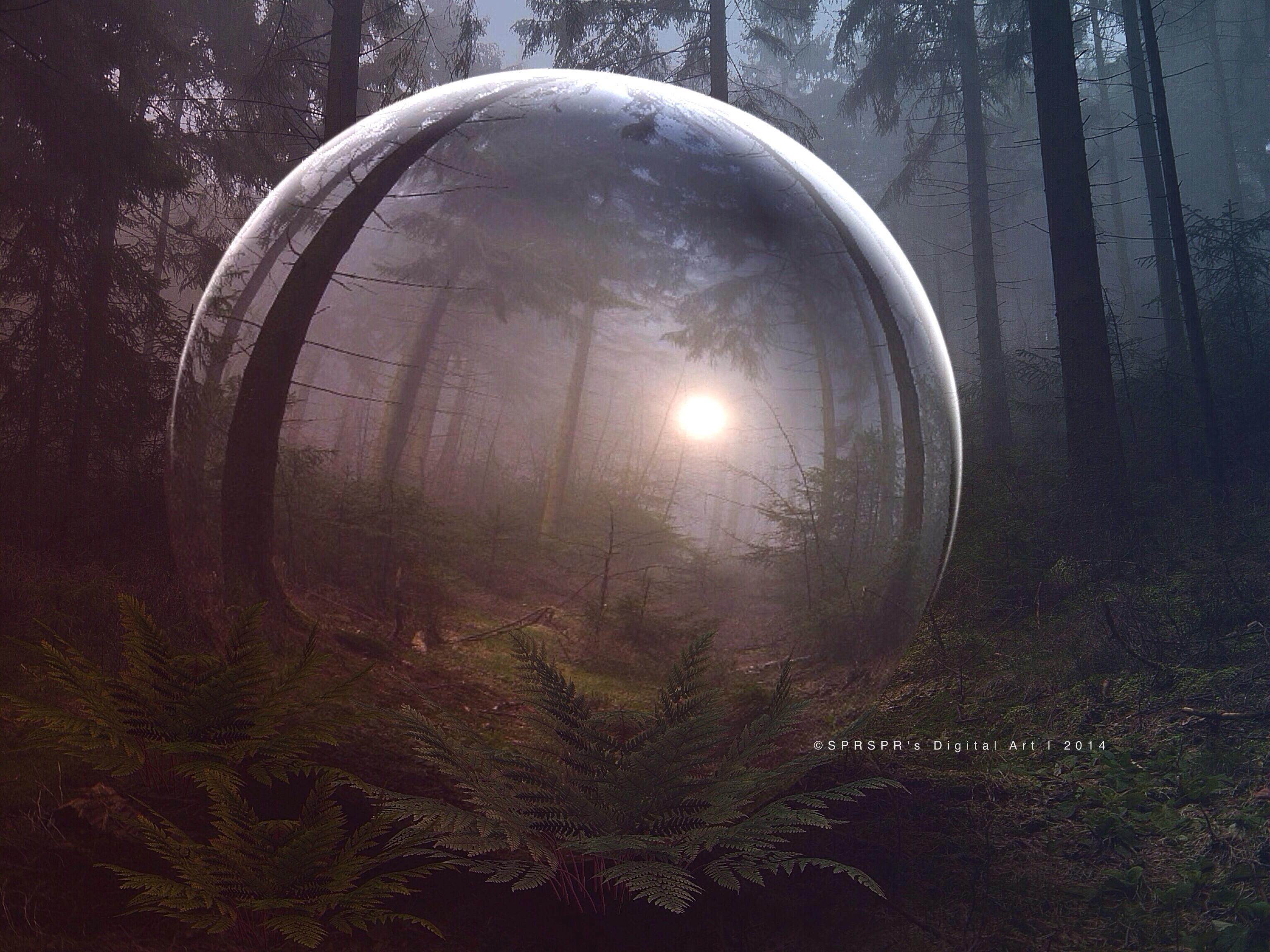 Something strange in the Forest by SPRSPRsDigitalArt