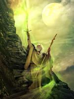 Wizard by SPRSPRsDigitalArt