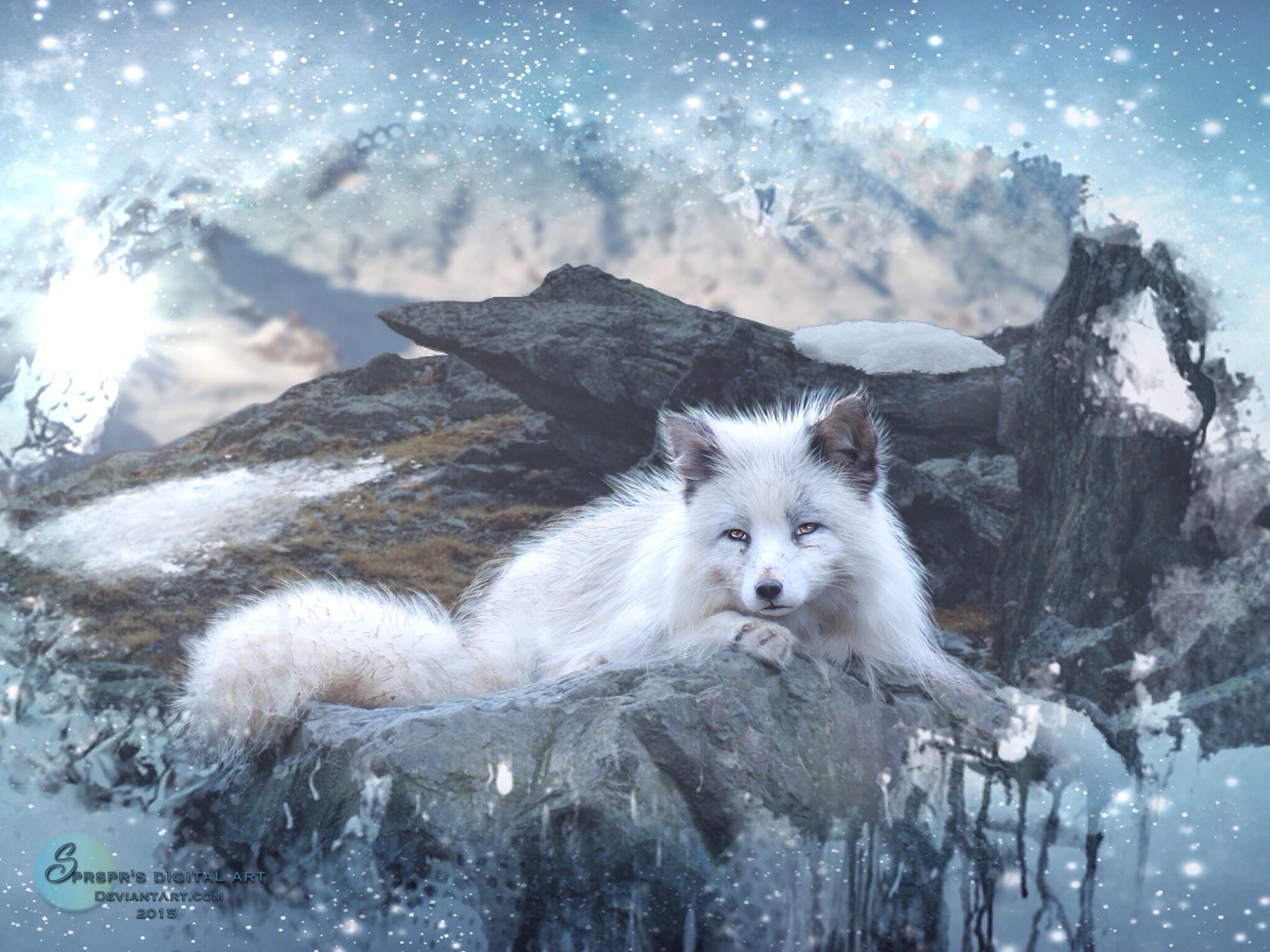 Winter fox by SPRSPRsDigitalArt