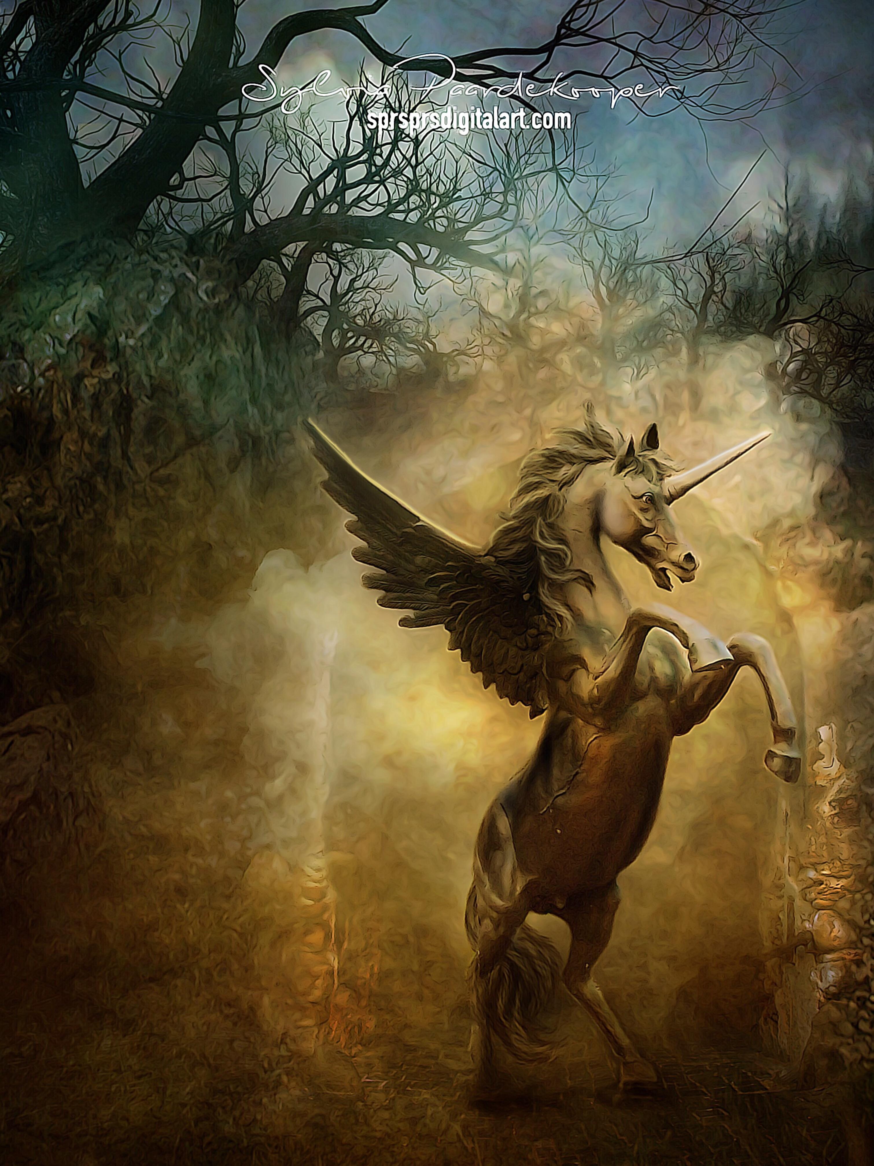 Wild unicorn