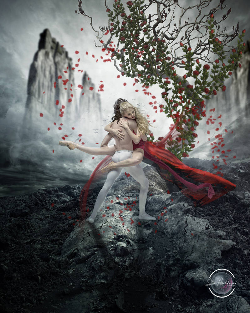 The dance of the roses