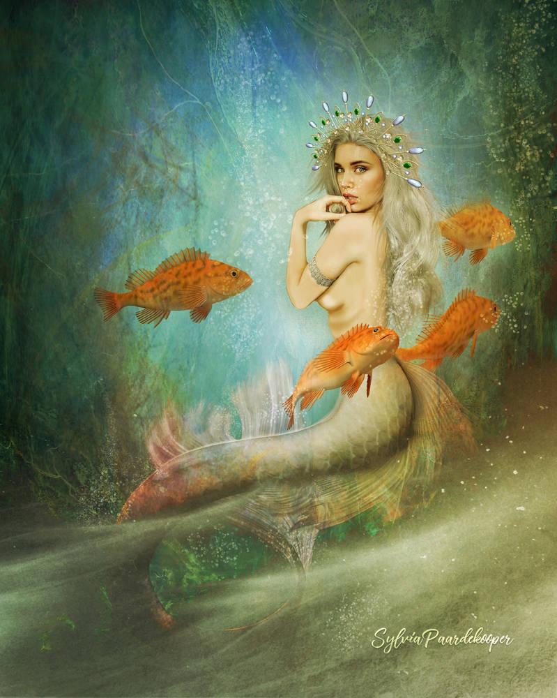 A mermaids life